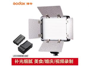 神牛(Godox)LED308II LED摄影灯遥控 网红婚庆DV摄像机采访主播 微电影补光(LED灯+2200锂电池+充电器)